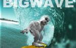 Il gioco dello Yeti parte 6 - The Bigwave (Hawaii)